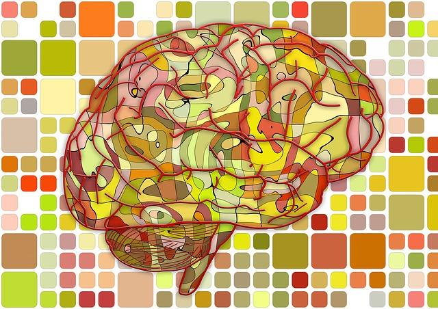 brain-951871_640