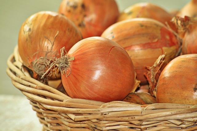 onions-1228362_640