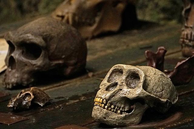 skull-and-crossbones-1096317_640