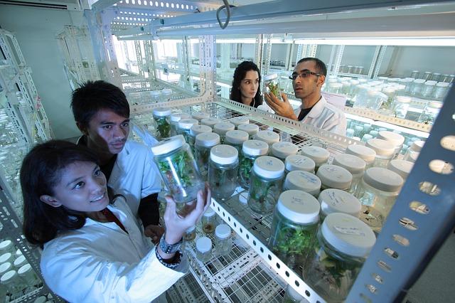laboratory-385349_640