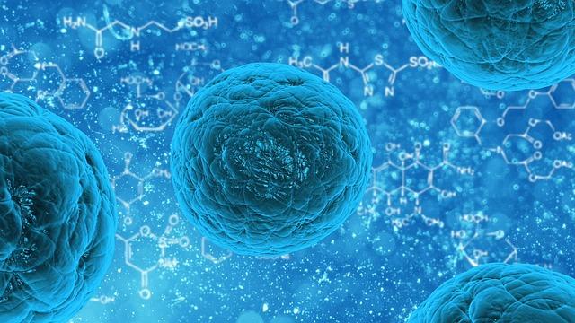 stem-cell-163711_640