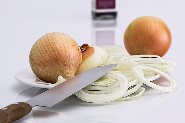 onion-647525_640