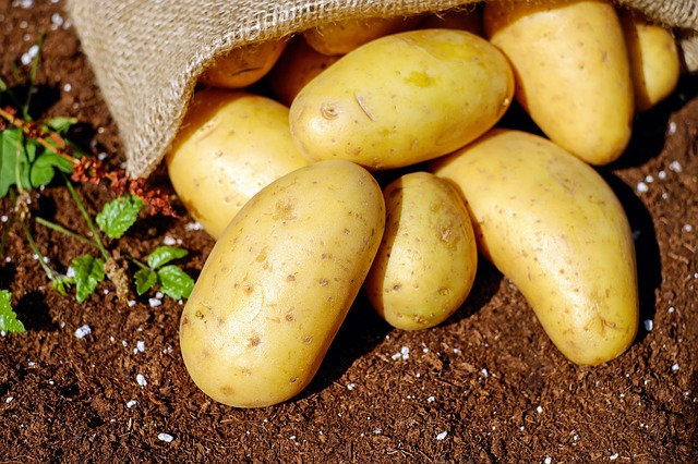 potatoes-1585075_640