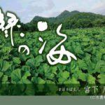 【緑の海】大自然の息吹の偉大さは言葉にならない