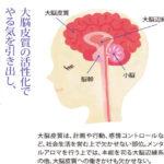 """香りは""""新しい脳を""""目覚めさせる【アロマの心理学】"""