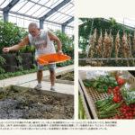 今よみがえる日本古来の「伝承野菜」【 いのちをいただくことは、記憶を受け継ぐこと】