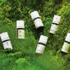 日本産精油の香りの魅力をさまざまな角度から紐解く【日本の森が育む精油のちから】