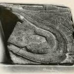 中国で2億年前の皮靴の化石が見つかった!?【目覚めよ、NIPPON 29】