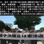 日本滅亡を容認するのか、まともな国への回帰を選択するのか?【目覚めよ、NIPPON 30】